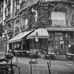 Chez Janou restaurant